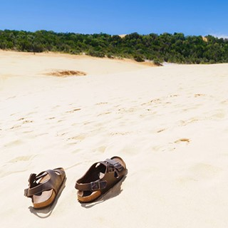 Top Fraser Island sights you need to see for yourself