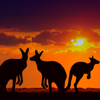 Travel Tips – A guide to the Australian Outback