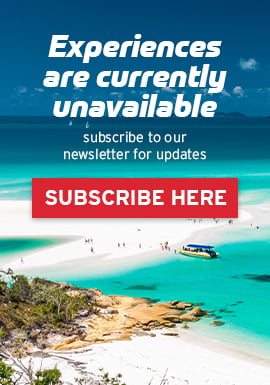 Experiences are currently unavailable, subscribe to our newsletter for updates